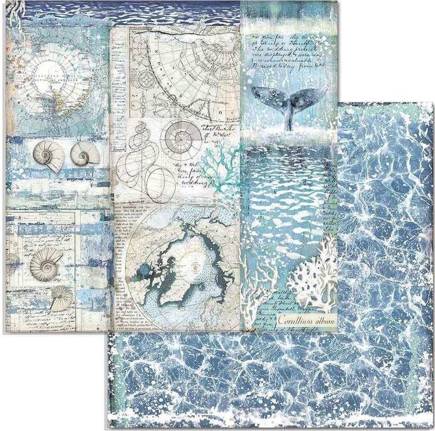 Stamperia Double-Sided Cardstock 12X12-Shells, Arctic Antarctic