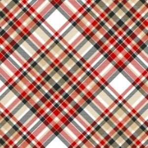 Gnomies (Flannel) by Shelly Cominsky - Diagonal Plaid on White Background