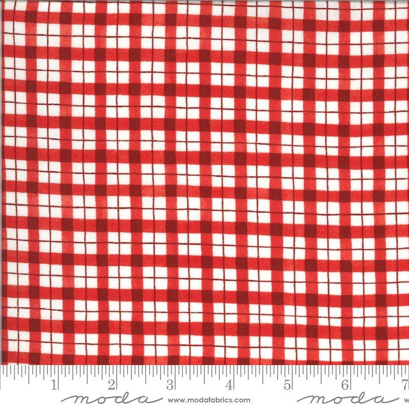 19974 12 Homegrown Salsa plaid fabric