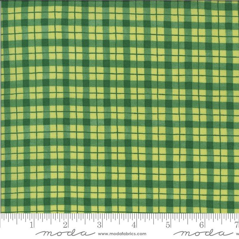 19974 17 Homegrown Salsa plaid fabric