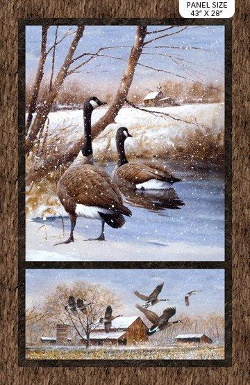 DP23511-34 Take A Gander Geese Panel