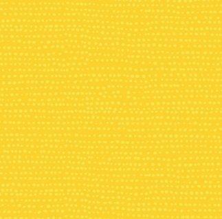 stella 1150 lemon Moonscape