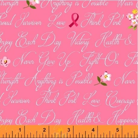 42141-3 Anything is Possible by Windham Fabrics