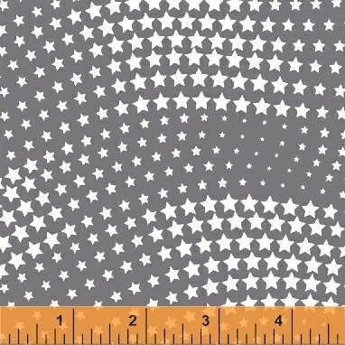 50123-5 Brave and Free by Windham Fabrics