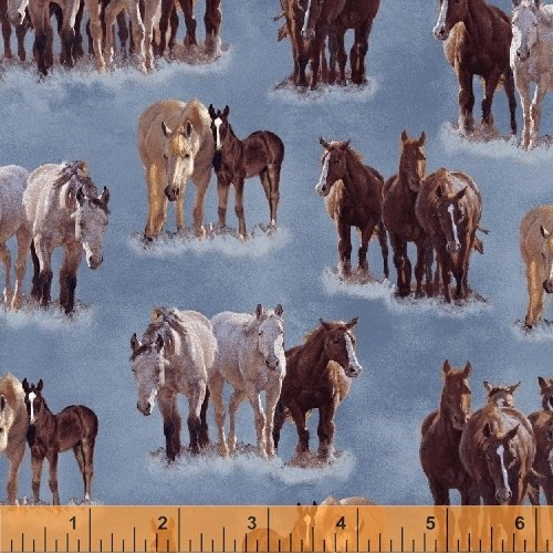 51531-1 Happy Trails by Windham Fabrics