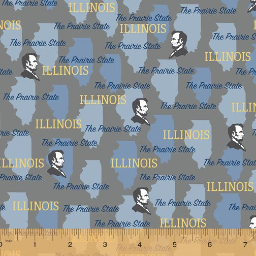 52327D-IL Illinois State Pride by Windham Fabrics