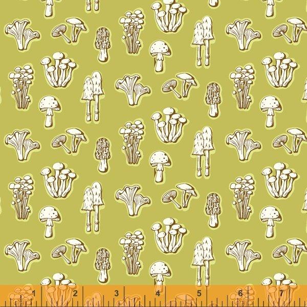 52460-5 Summer School by Judy Jarvi for Windham Fabrics