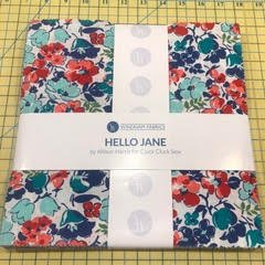 10 squares Hello Jane by Alison Harris for Windham Fabrics