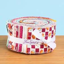 Denyse Schmidt Franklin Design Roll 2 1/2 Strips 40pcs