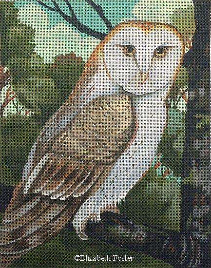 EF109 - OWL 18M