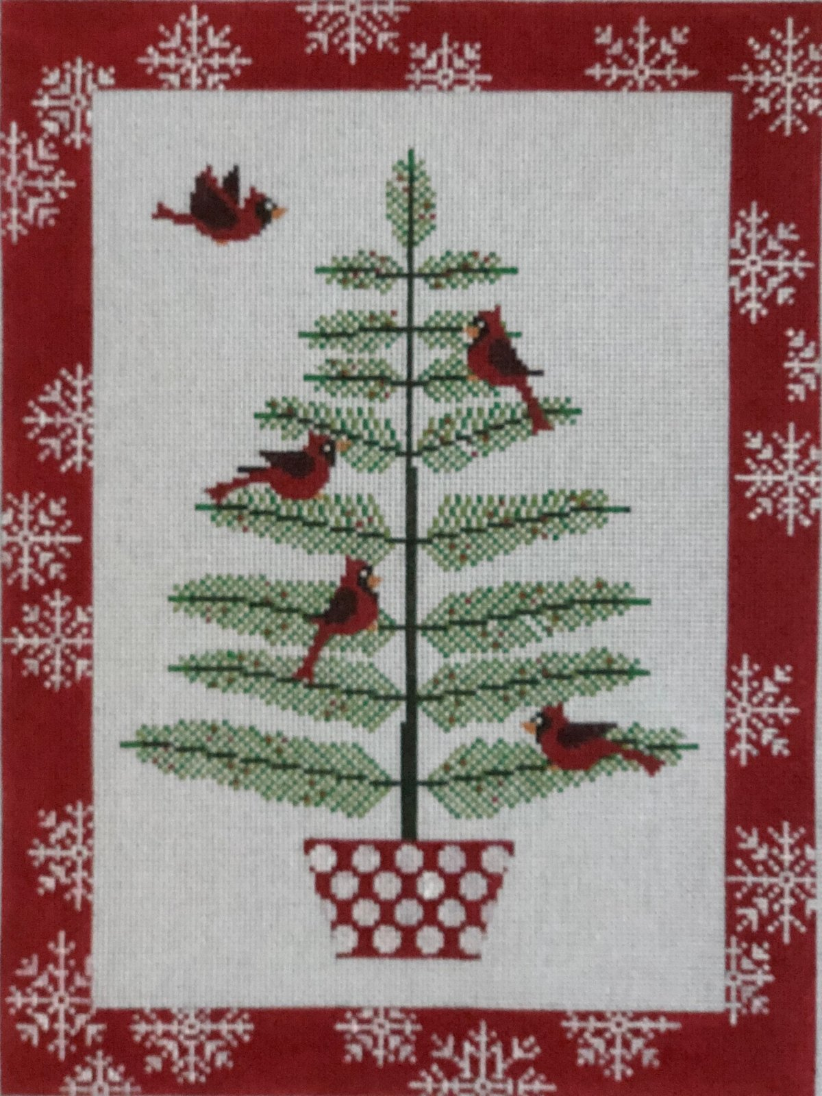 X055 - CARDINALS IN PINE TREE