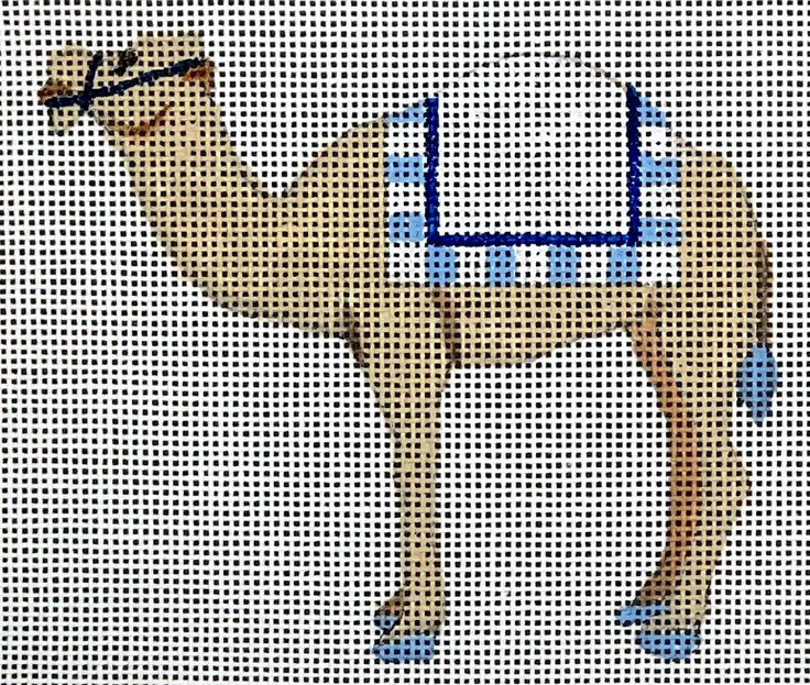 N11 - CAMEL