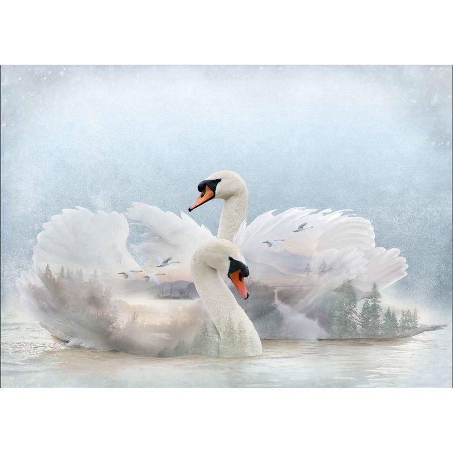 Call of the Wild  - Swan Lake