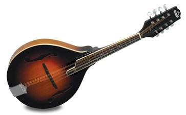 MORGAN MONROE A STYLE MANDOLIN GLOSS FINISH