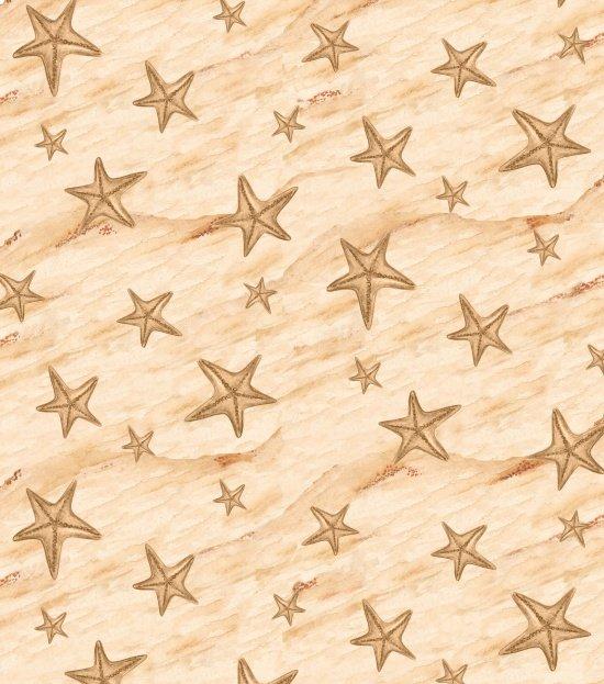 Shore Thing - Starfish