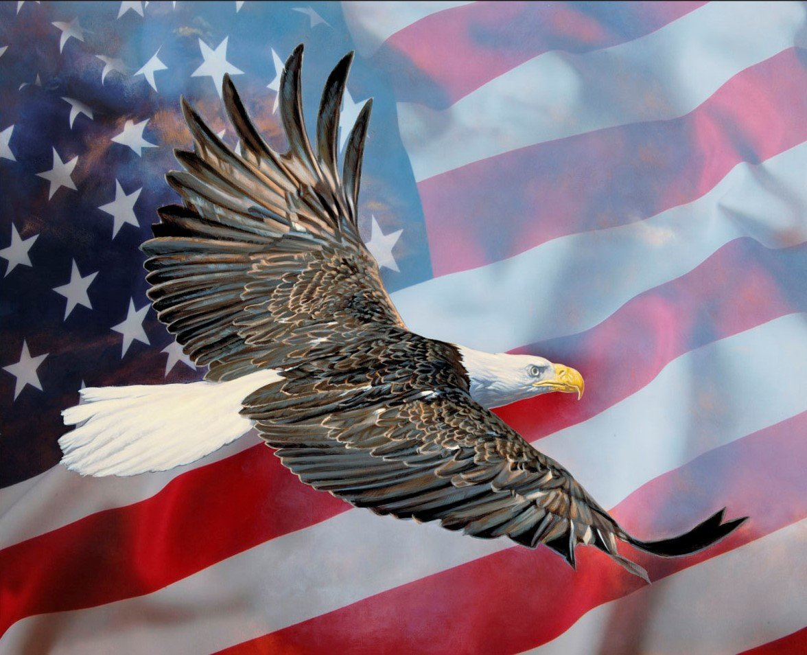 EAGLE AND FLAG PANEL, 36in x 44 in