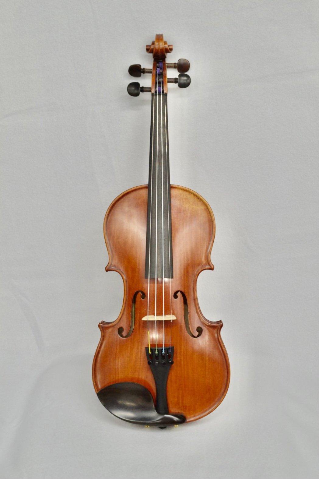 Violin 420