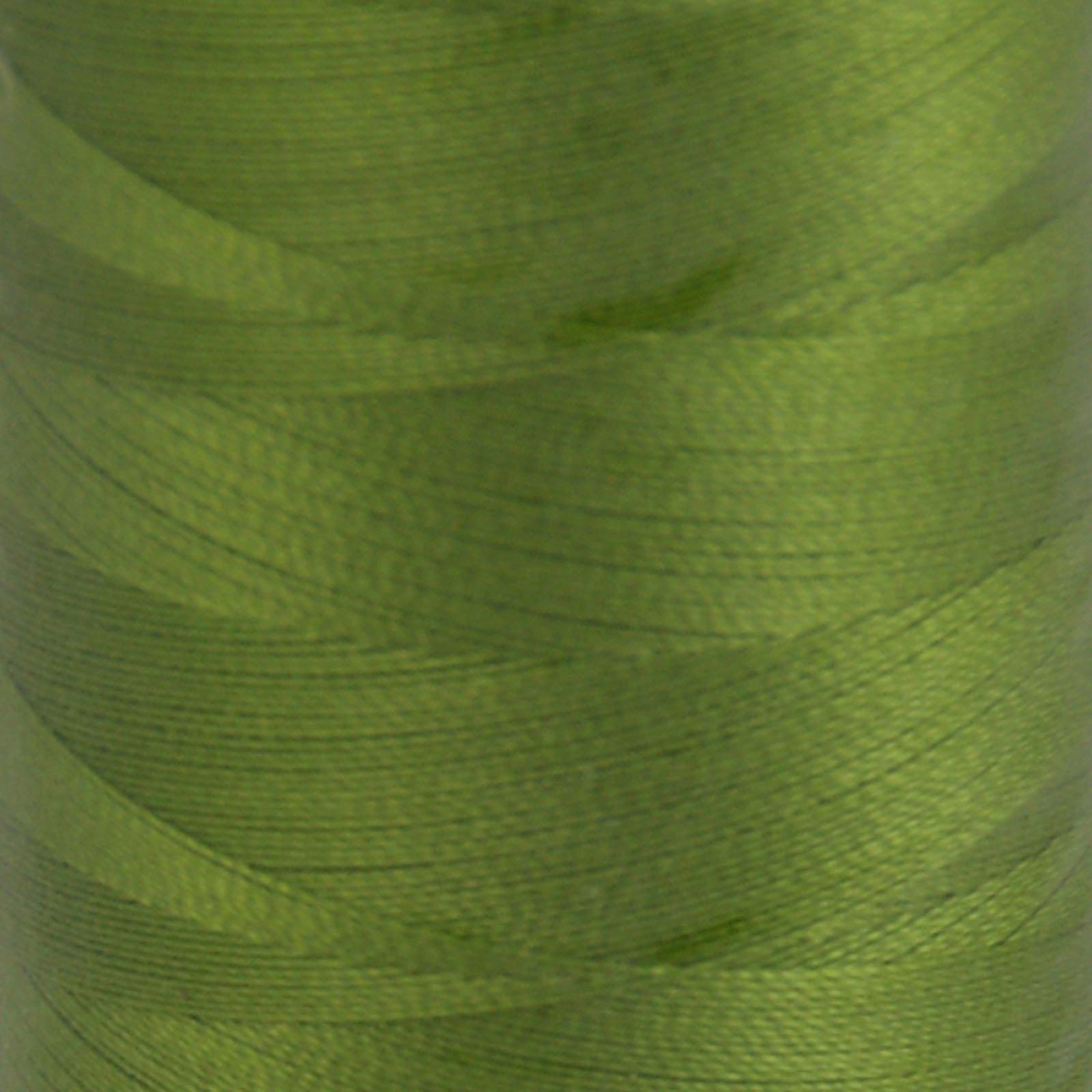 # 2888 Fern Green