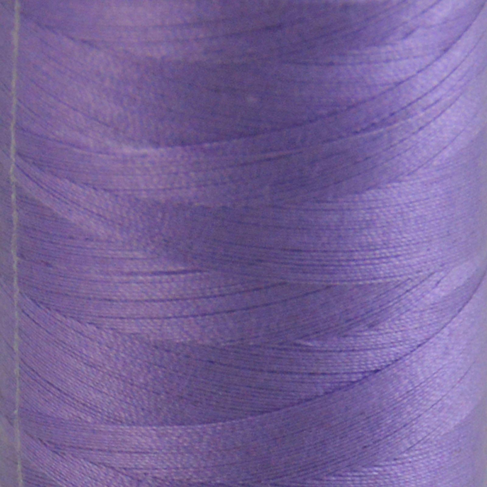 # 2520 Violet