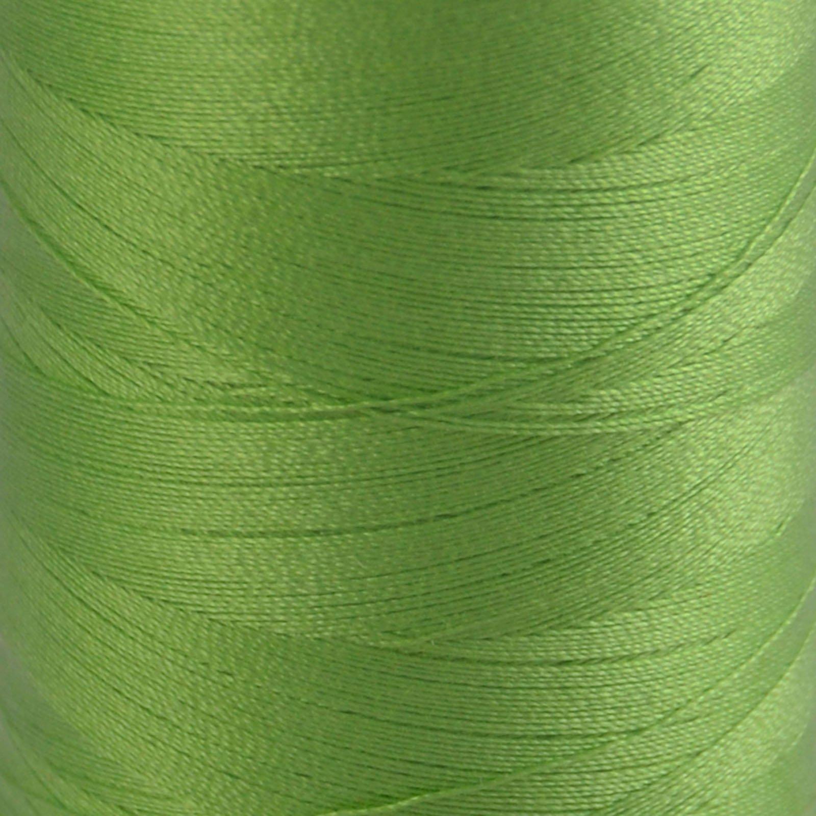 # 5017 Shining Green