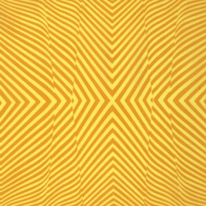 True Colors by Tula Pink for Free Spirit Fabrics - PWTC028 Amber - Lazy Stripe