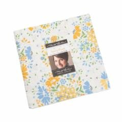 Spring Brook by Corey Yoder for Moda Precuts M29110LC  Layer Cake 42 Ice Asst 10x10