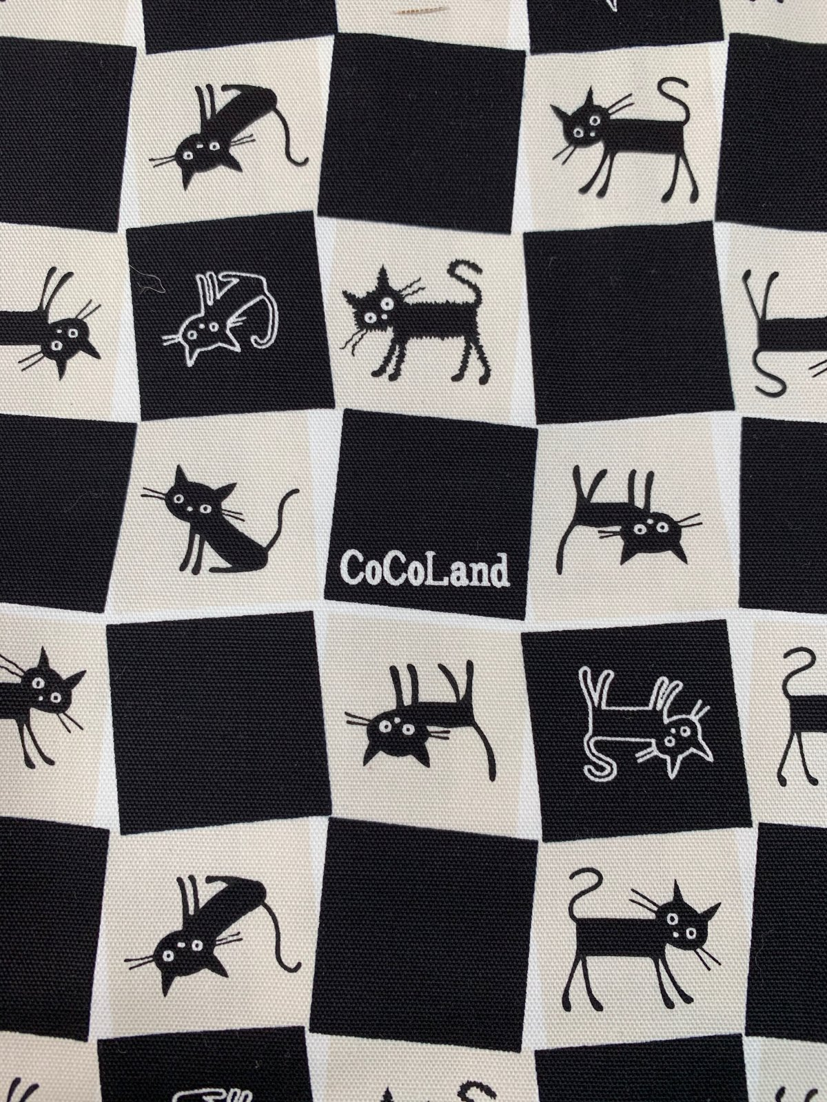 Cosmo canvas Cocoland cats black/white