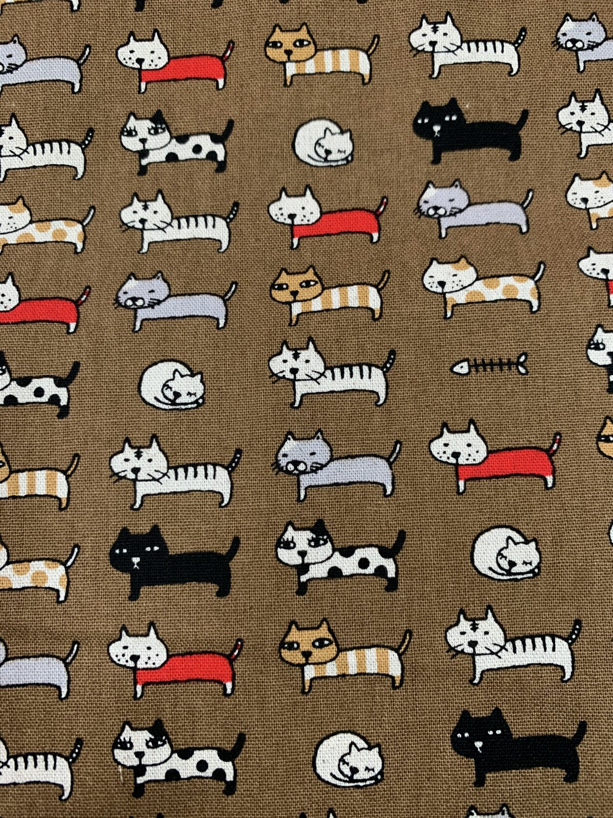 Cosmo canvas multi cats brown background