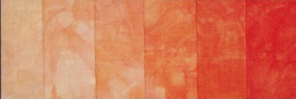 Orange Blosson Special