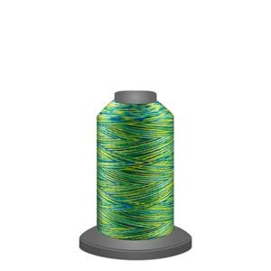 Affinity 1000 yds variegated poly Cyber