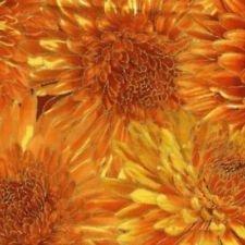 Autumn Harvest 3219 Harvest