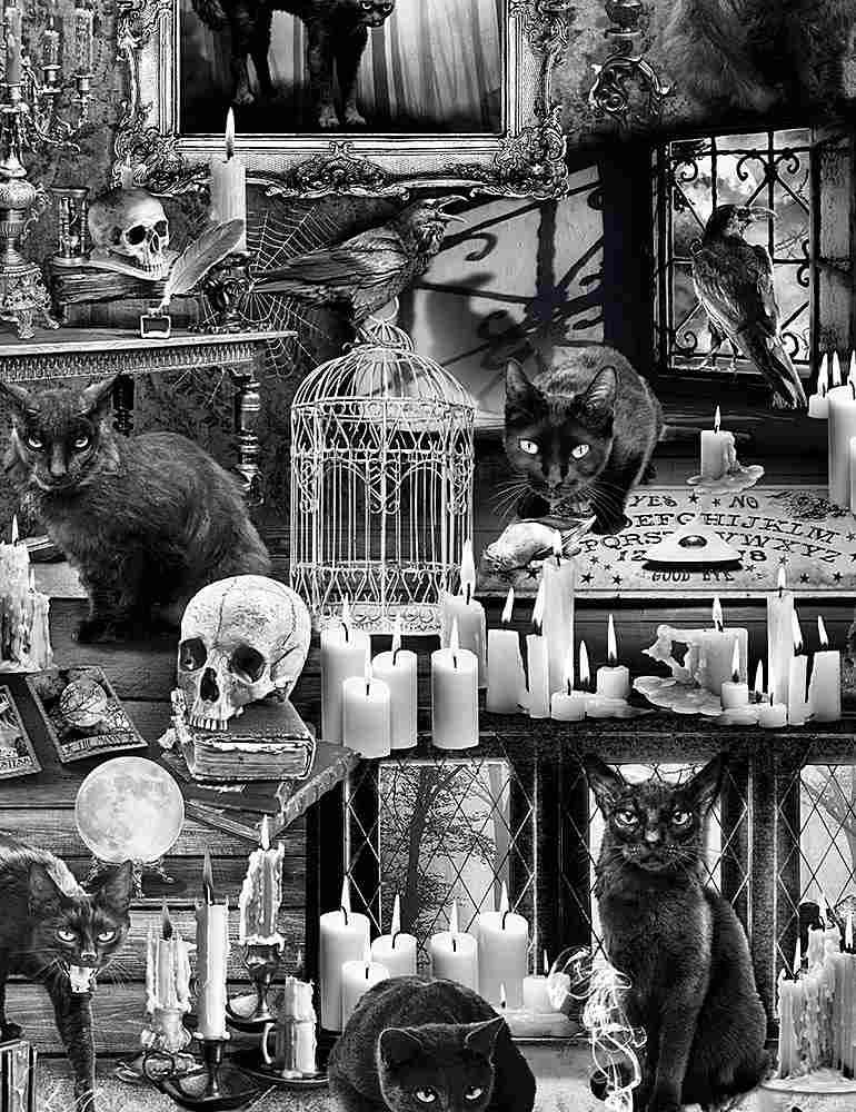 Wicked Fog Black Cats in Haunted Houses
