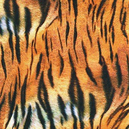 Animal Kingdom Tiger Print