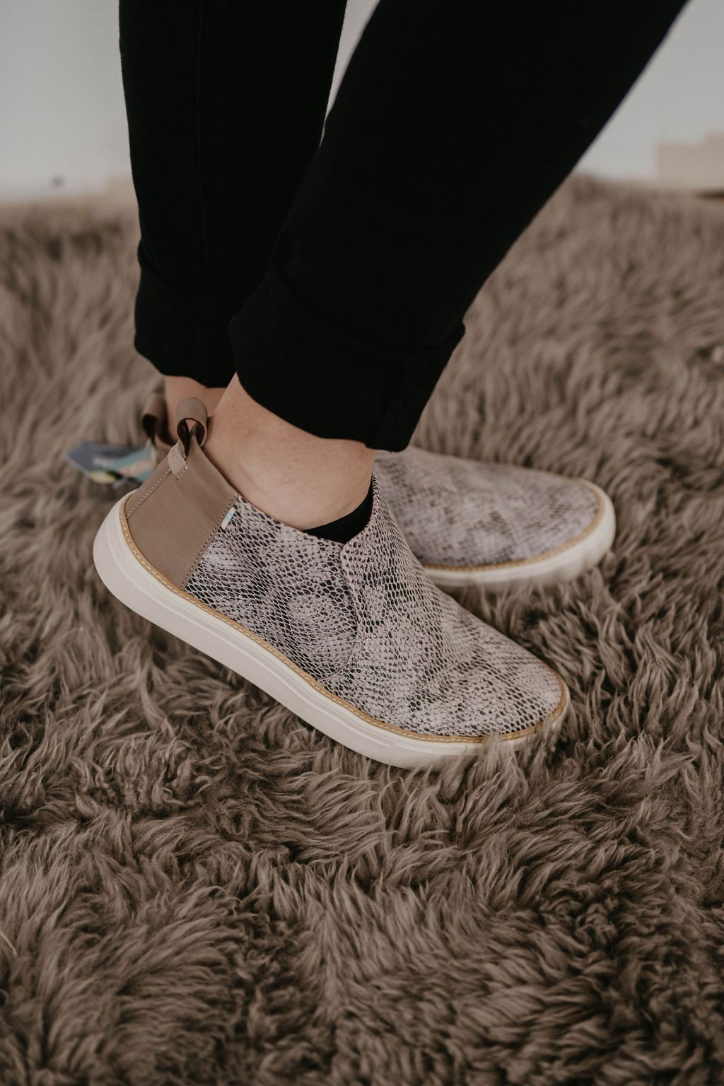 Toms  Paxton Cobblestone Snake Printed Suede shoe