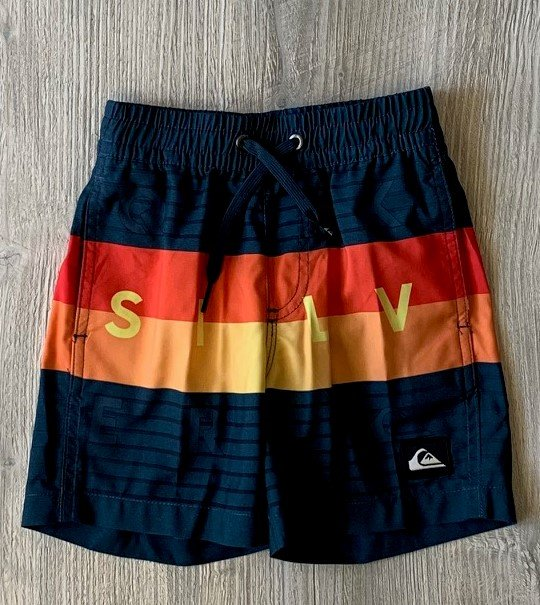 Quiksilver Stripe Swim Trunks