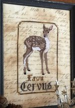 the Fawn Primitive Hare