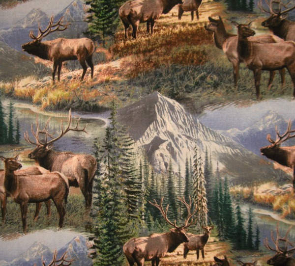 Mountain Sky elk Scenic