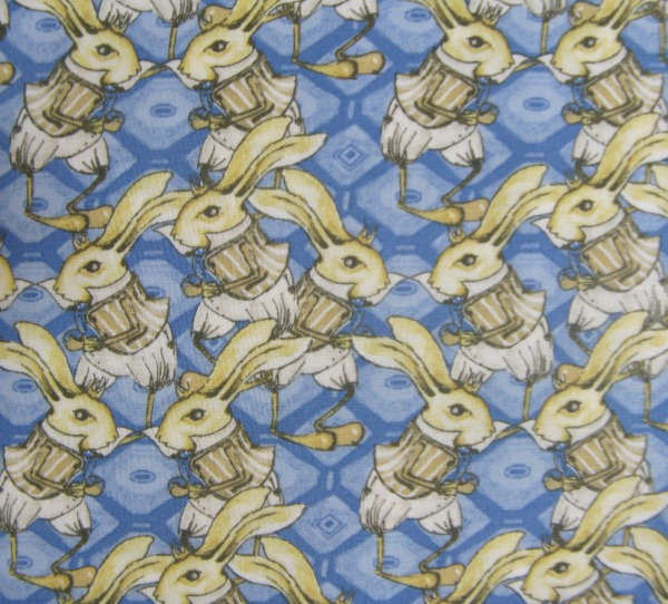 Riddles & Rhymes Bunny Rabbit