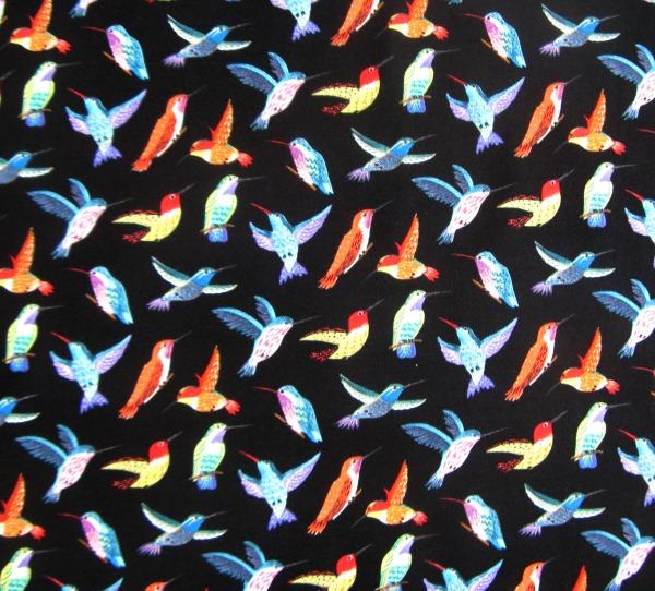 Los Cabos birds black