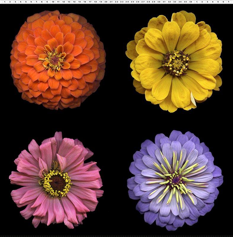 Flower Power  Y3050-55