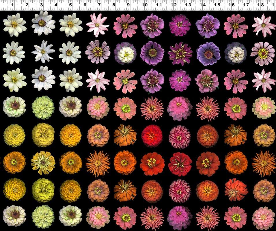 Flower Power  Y3051-55