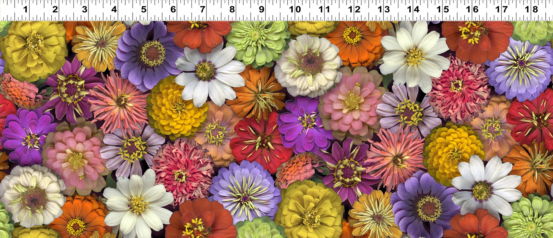 Flower Power  Y3052-55