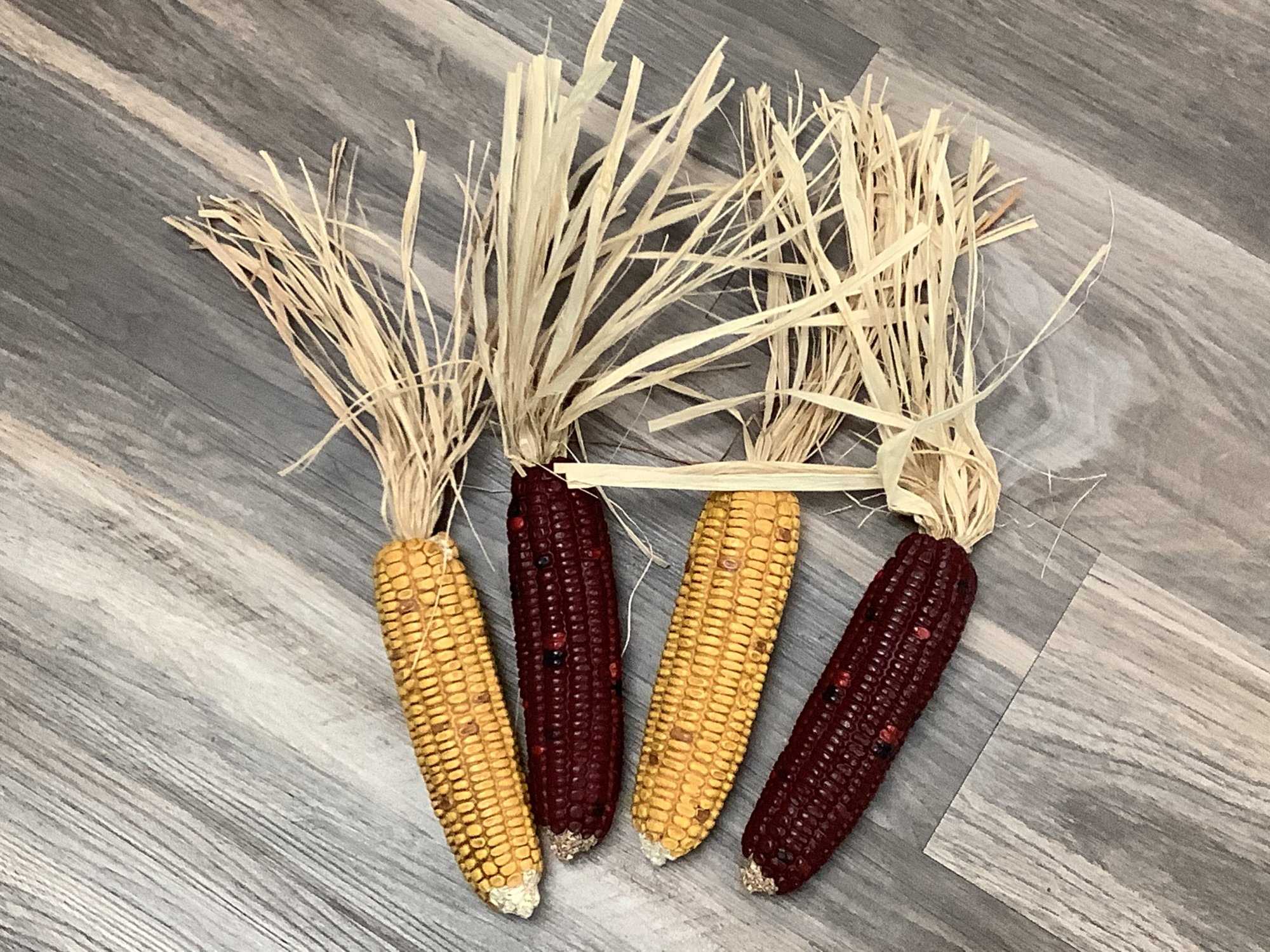 Fall Decorative Indian Corn