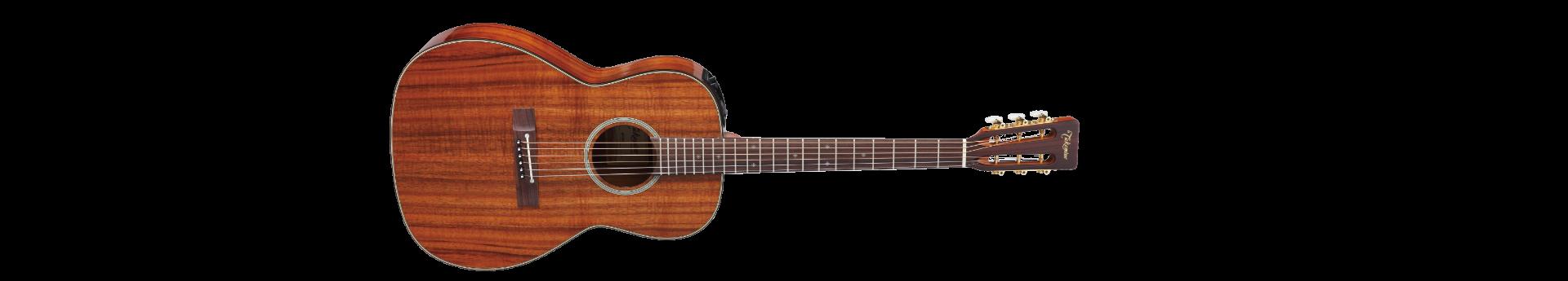TAKAMINE EF407 Ac/El Guitar w/Case