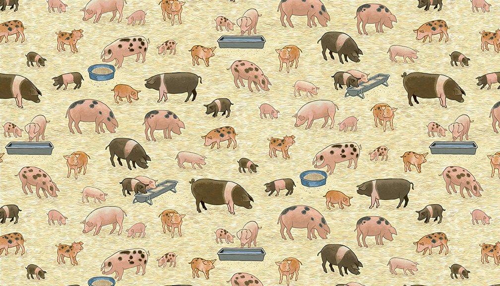 Village Life 2292_1_Pigs