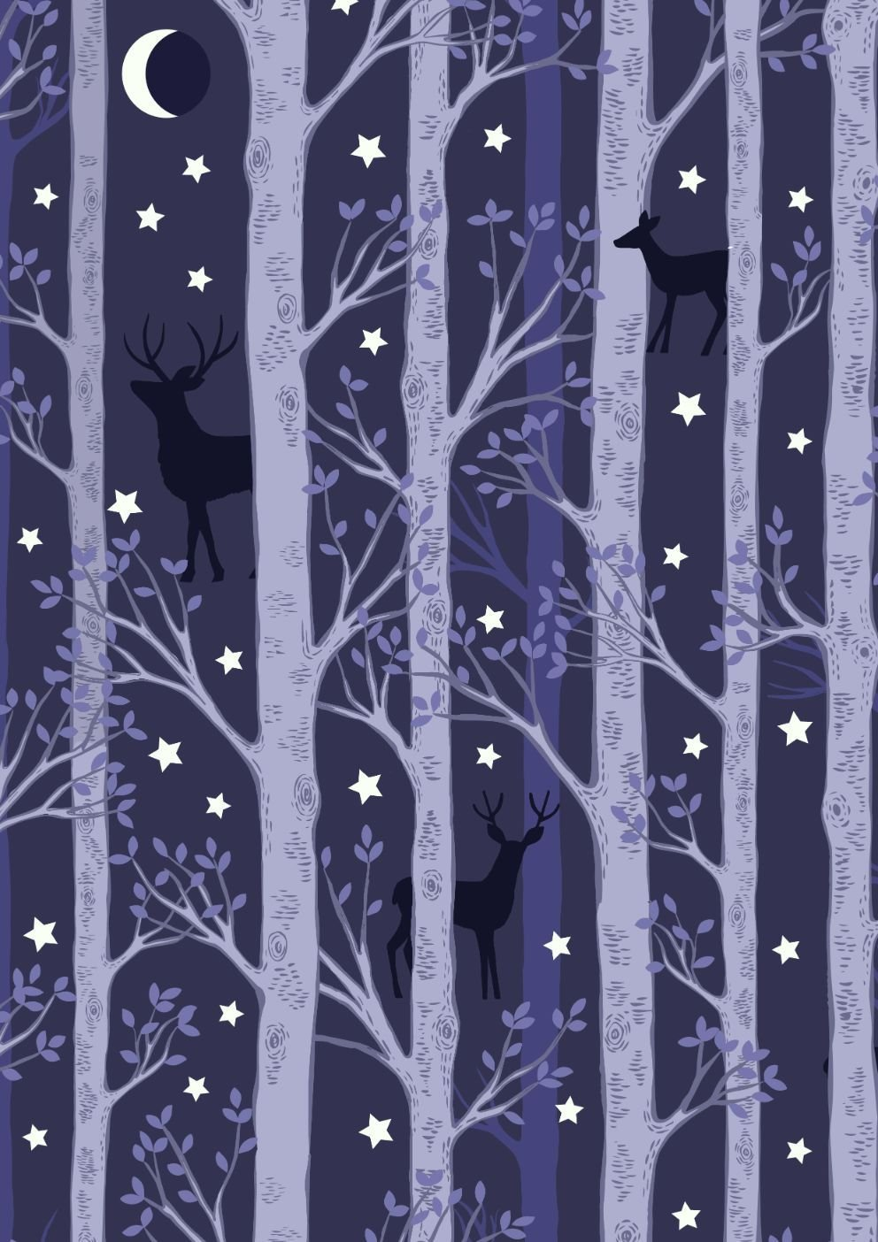 Nighttime in Bluebell Wood 478-3