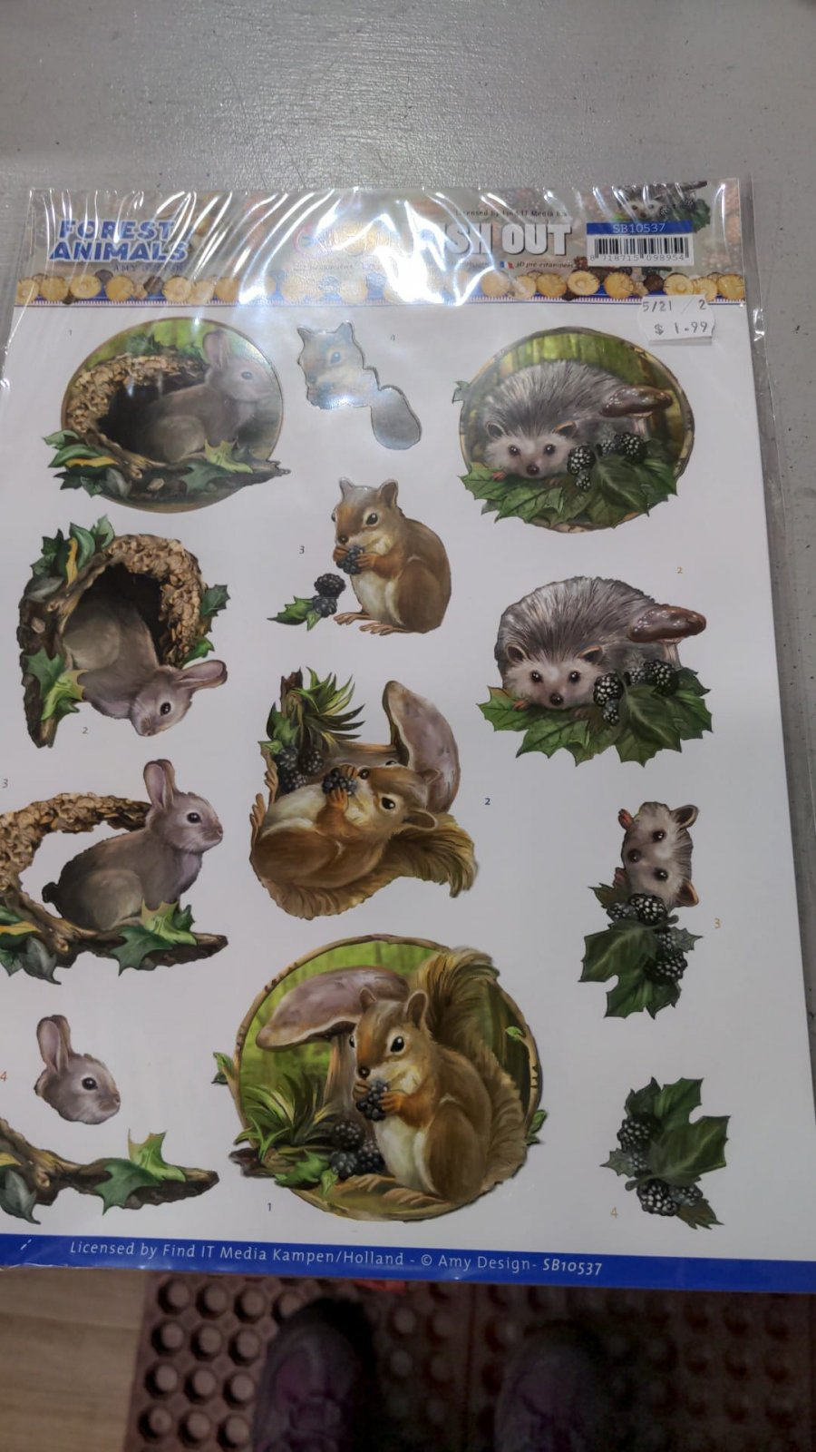 3D Push Outs Forest Animals