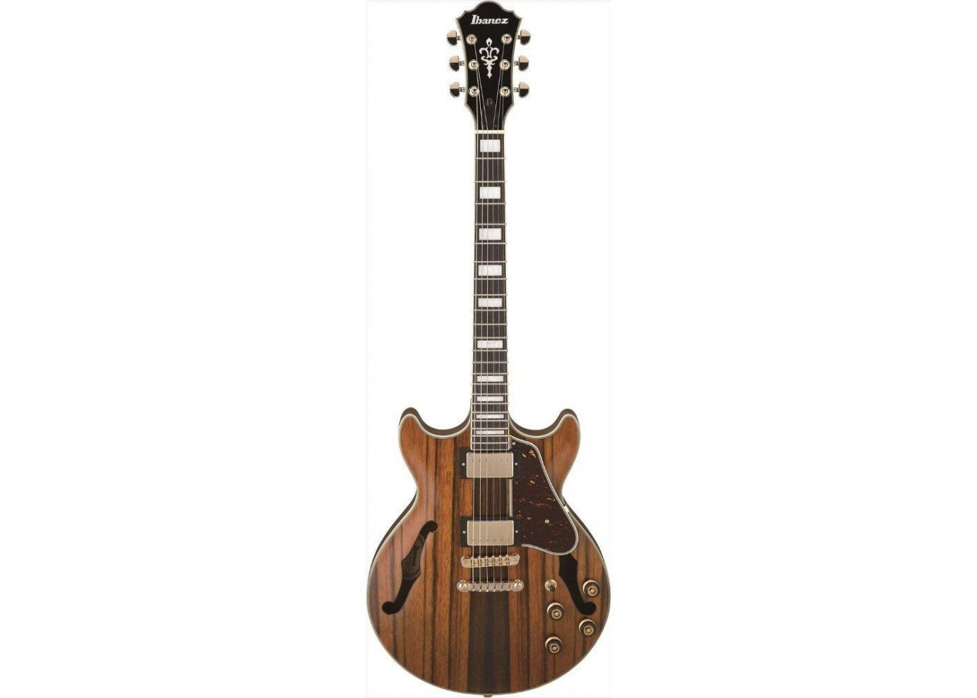 Ibanez AM Artcore Expressionist 6str Electric Guitar - Natural