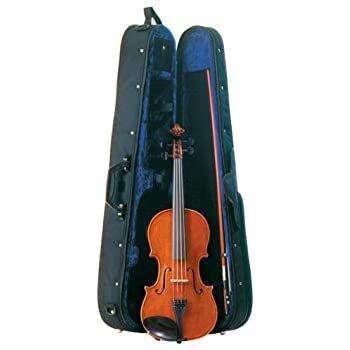 Palatino Violin Outfit -4/4