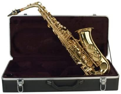 Palatino E-Flat Alto Saxophone